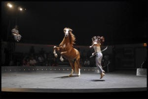 Cirque Bestias LPA Riscle